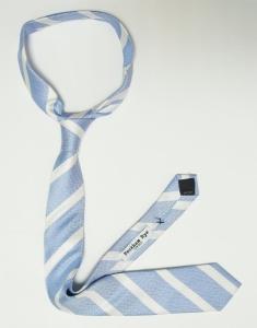 Skinny tie 1 (4).JPG