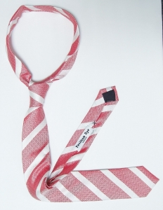 Skinny tie 1 (5).JPG